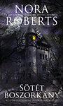 Sötét boszorkány - O'Dwyer örökség 1.