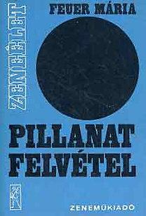 Feuer Mária: Pillanatfelvétel (magyar zeneszerzés 1975-1978)