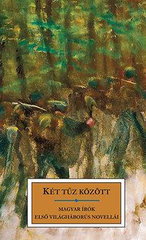 Gram-Dell'Amico: Két tűz között - Magyar írók első világháborús novellái