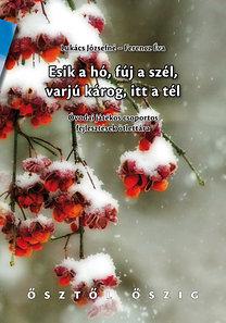 Lukács Józsefné, Ferencz Éva: Esik a hó, fúj a szél, varjú károg, itt a tél - Óvodai játékos csoportos fejlesztések ötlettára