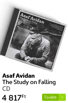 Asaf Avidan: The Study on Falling