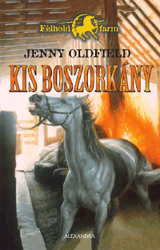 Jenny oldfield kis boszork ny bookline for Classic house zene