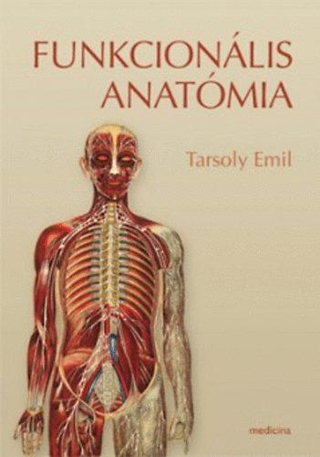anatómia felállítása