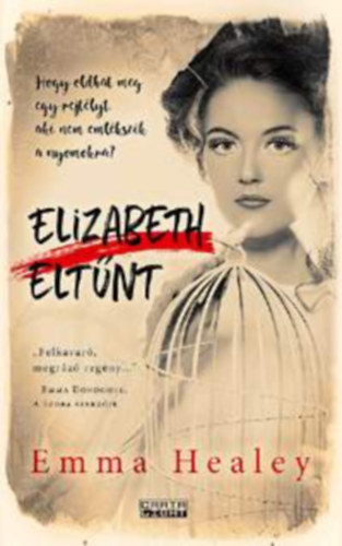 Elizabeth Healey: Elizabeth eltűnt