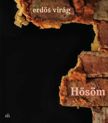 Erdős Virág: Hősöm