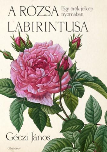 Géczi János: A rózsa labirintusa