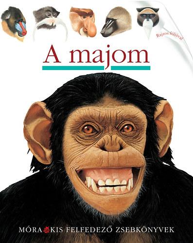 majom felállítása gyakorlatok a pénisz szélességének növelésére