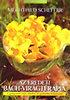 Mechthild Scheffer: Az eredeti Bach-virágterápia - A gyógymód teljes elméleti és gyakorlati bemutatása