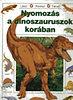 Rosie Heywood: Nyomozás a dinoszauruszok korában