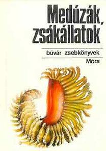 Bába-Veres: Medúzák, zsákállatok (búvár zsebkönyvek)