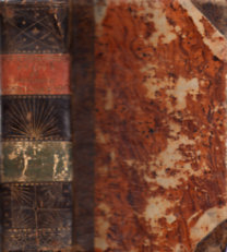 Gradus ad Parnassum sive Synonymorum Epithetorum II. (L-Z)