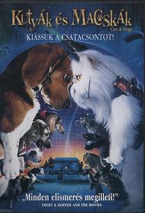 Kutyák és macskák