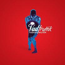 Vad Fruttik: Tudom milyen - CD