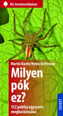 Heiko Bellmann; Martin Baehr: Milyen pók ez? - 132 pók egyszerű meghatározása