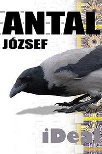 Antal József: iDeal