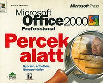 Park Kiadó: Microsoft Office 2000