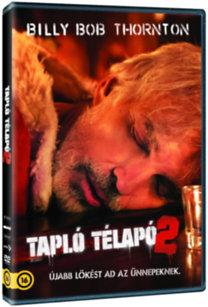 Tapló télapó 2. - DVD