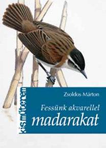 Zsoldos Márton: Fessünk akvarellel madarakat