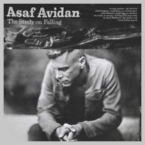 Asaf Avidan: The Study on Falling - CD